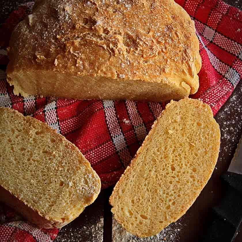 paine fara gluten fara framantare
