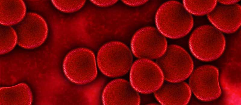 Care este legatura intre anemie si intoleranta la gluten?