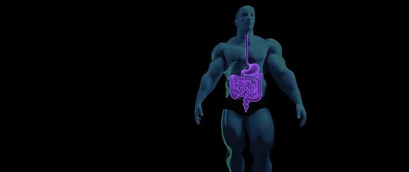 Risc de cancer intestinal pentru celiacii care nu urmeaza dieta fara gluten