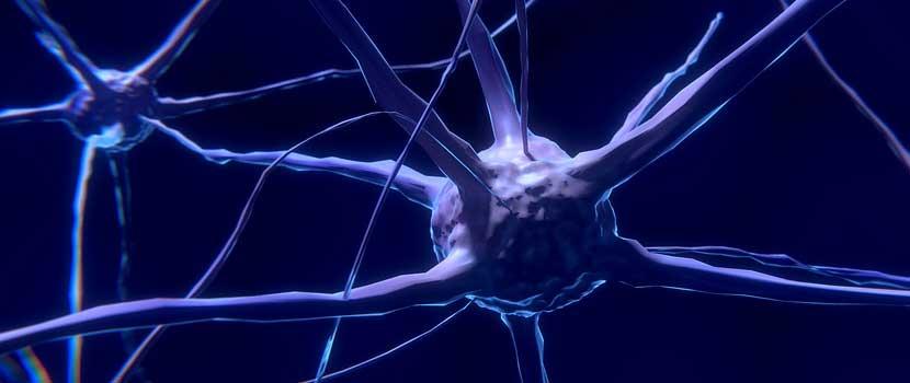 Glutenul - factor agravant pentru scleroza multipla