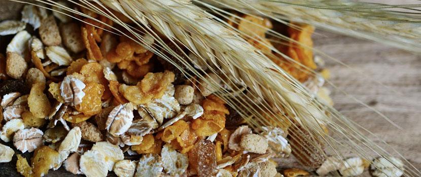 Secara, orzul, graul - cereale de care trebuie sa te feresti si motivele pentru care iti pot face rau!