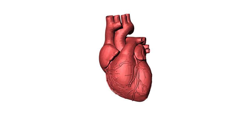 Cardiomiopatia dilatativa idiopatica si boala celiaca