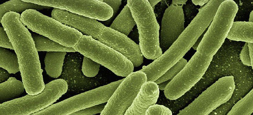Infectiile virale - boala celiaca si alte boli autoimune